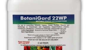 BotaniGard Provides Biological Insect Control