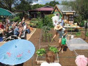 Square foot gardening class at The Natural Gardener