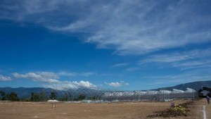 Exclusive: Danziger Is Building A State-Of-The-Art Stock Farm In Guatemala