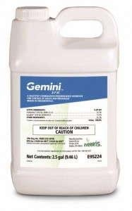Gemini_2pt5_gal