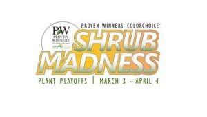 Proven Winners ColorChoice Shrub Madness