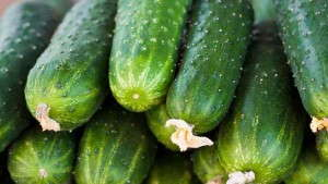 8 Vegetables You Should Try