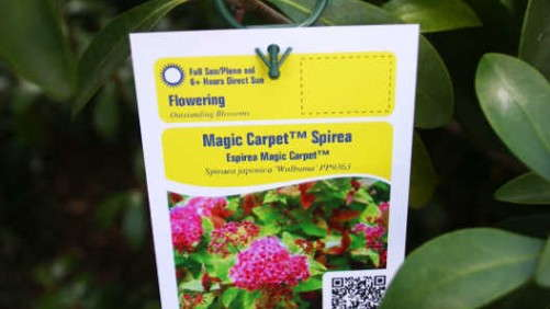 Horticultural Marketing And Printing's Quickattach Clips Make Tagging Trees And Shrubs Easier