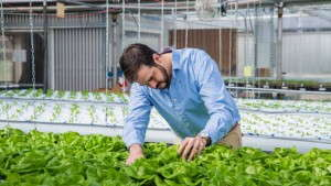 The Circle Fresh Institute Wants To Train The Next Generation Of Growers