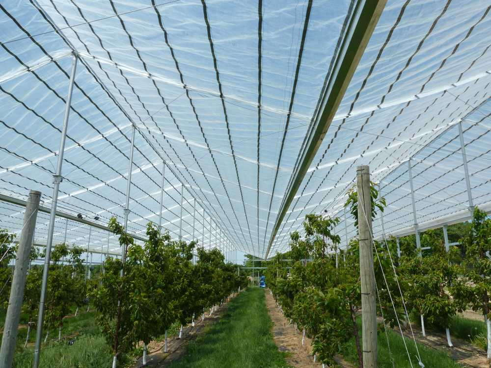 9 High Tunnel And Shade Products For Your Operation