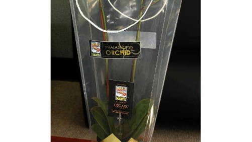 Rocket Farms Gifts Flowers For Oscar VIPs
