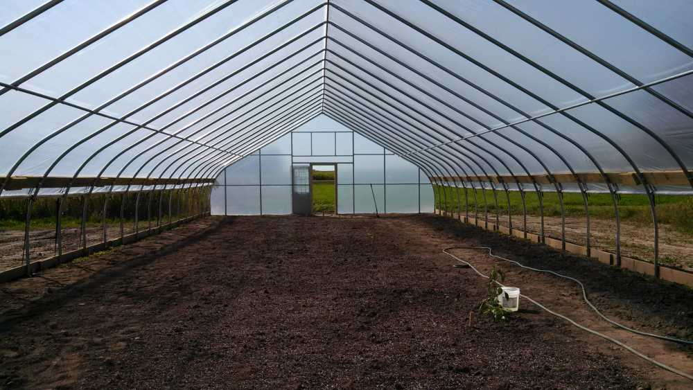 High Tunnels Help To Expand Markets Crops Greenhouse Grower