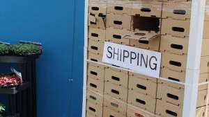 EuroAmerican Propagators Offers New Shipping Solutions