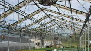 Greenhouse Growers Look To Build And Retrofit In 2015