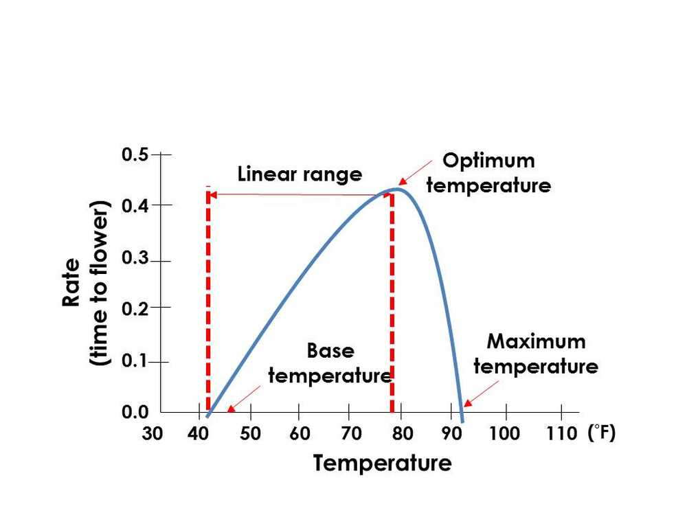 Figure 1 -June Basics&Beyond