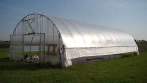 High Tunnels: Reduce Heating Costs While Improving Bedding Plant Quality [Slideshow]