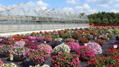 AmericanHort Is Hosting A Greenhouse Tour In New Jersey This September