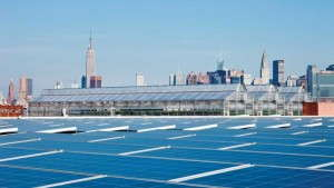 Gotham Greens To Build Rooftop Farm In Chicago