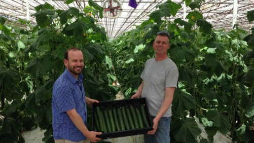 Meeting The Demand For Edibles: Altman Plants
