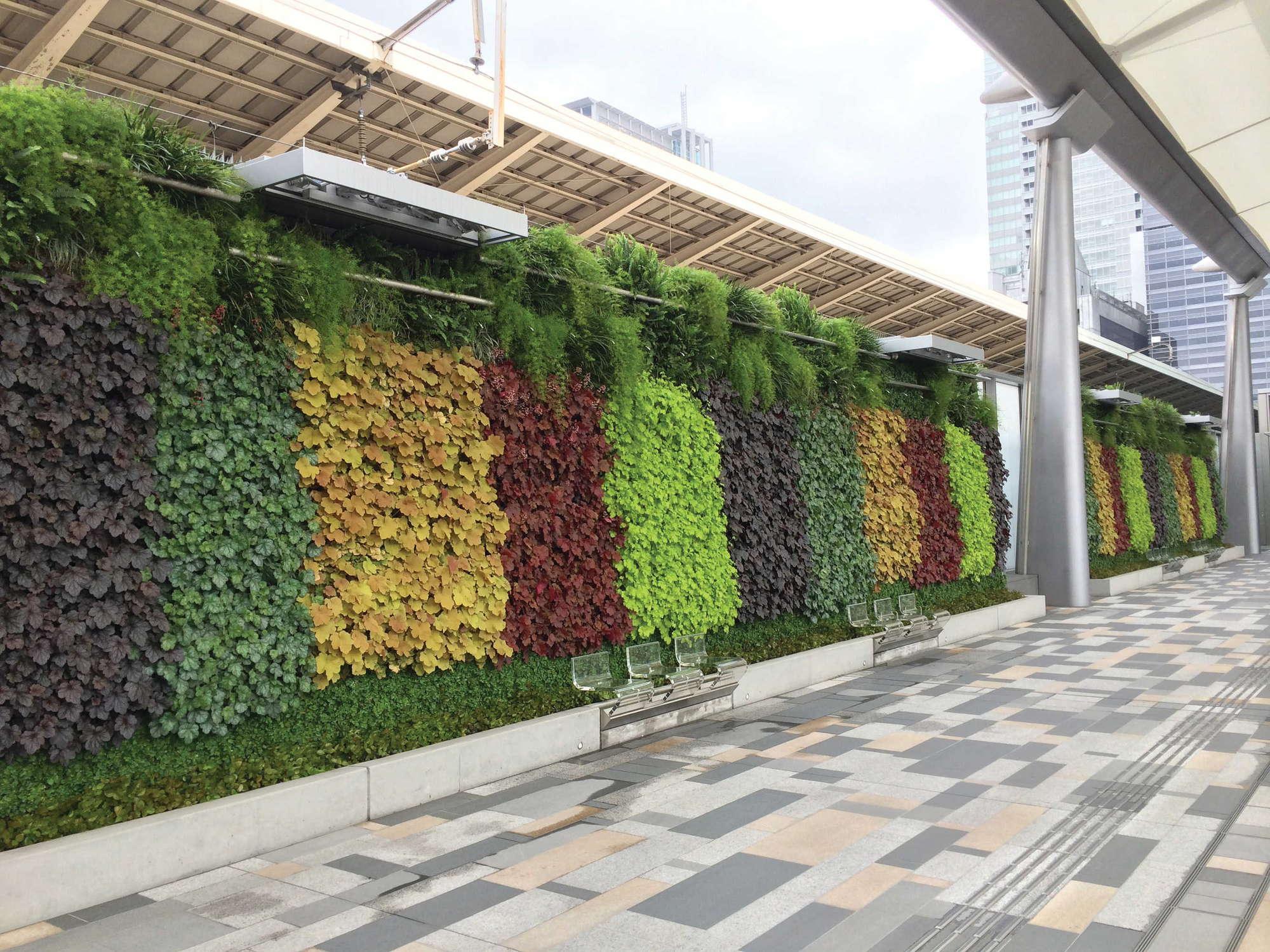 Green Wall at JR Tokyo Train Station