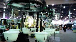 Water Logic Rapid Automated 2