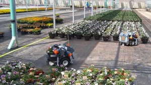Harvest Automation Has Moved More Than 5 Million Plants Following Free Robot Work Offer