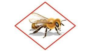 AFE To Fund Honey Bee Health Research Focused On Translocation Of Systemic Insecticides