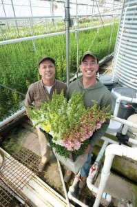Charles and Matt Bauer grow hydroponics snapdragons in White Hall MD