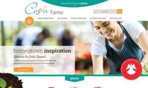 Costa Farms' new website 2015
