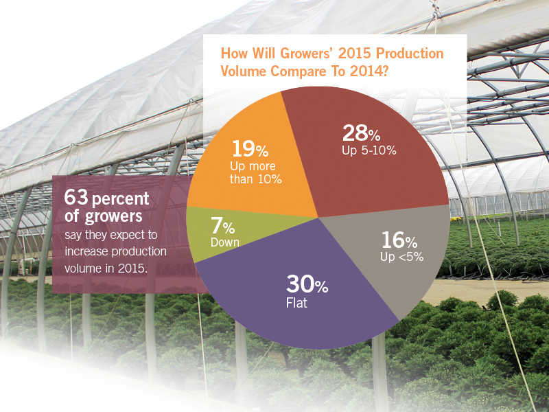 The 2015 State Of The Greenhouse Industry: Numbers At A Glance