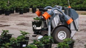 Robots Grab Hold Of Growers' Material Handling Needs