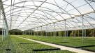 Stuppy Greenhouse Manufacturing's Rainbow Super Structure