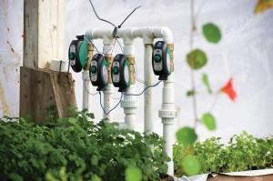 Aquaponics Pumps At Brogue Hydroponics