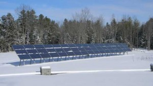 Cozy Acres Greenhouses: Operating With Zero Emissions