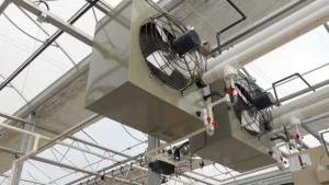 New Ways To Give Growers Control Of The Greenhouse Environment