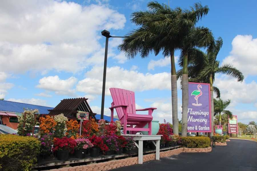Flamingo Road Front Sign And Chair