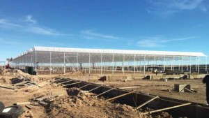 GrowCo_greenhouses