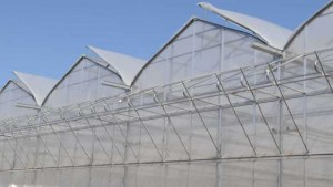 10 Greenhouse Products For First-Rate Growing Environments