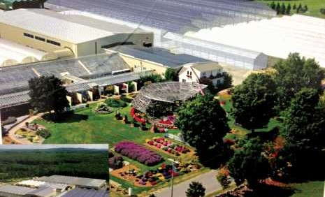 Pleasant View Gardens Transitions Old-School  Hoop Houses To One Energy-Efficient Facility