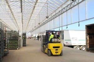 Metrolina Greenhouses Loading Dock