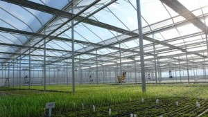 GGS Helps North Creek Nurseries Take Efficiency To A New Level