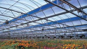 The Energy Efficient Greenhouse