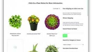 Altman Plants' Online Cactus Shop Shows Strong Sales