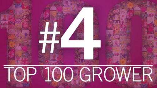 2015 Greenhouse Grower Top 100 Growers: Kurt Weiss Greenhouses (No. 4)