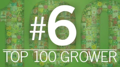 2015 Greenhouse Grower Top 100 Growers: Bell Nursery (No. 6)