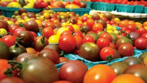 Keeping Your Greenhouse Vegetables And Fruits Safe: Focus On Soilless And Hydroponics Systems