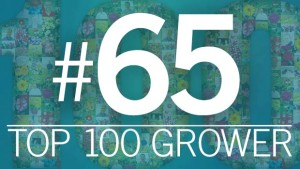 2015 Top 100 Growers: Corso's Perennials (No. 65)