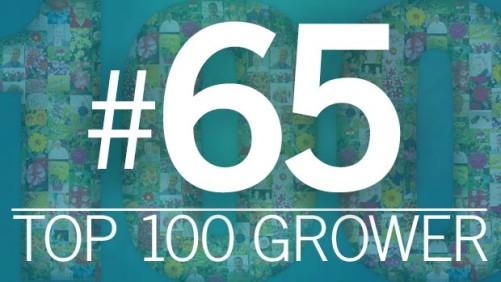 2015 Top 100 Growers: Corso's Perennials (No. 65)