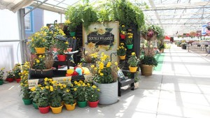 Grow Inspiration To  Grow The Horticulture Industry