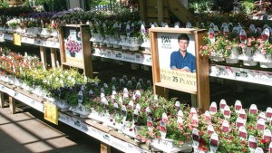 Retailer To Grower: It's Time To Offer Services  To Local Garden Centers, Too