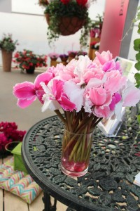 Local Florists Celebrate Women's Day and SAF Promotes Occasion With New Video