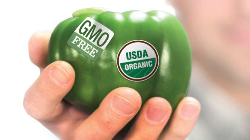 Study: Many Consumers  Unwilling To Waver On GMOs