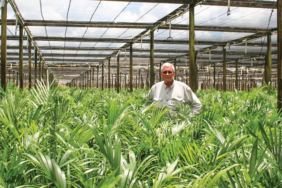 Bill Lewis, grower manager at Delray Plants, says the company has been using biological controls for more than 10 years, longer than he has been with the company