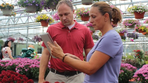 What Marketing Approach Can Attracts the Most Customers to Your Greenhouse?