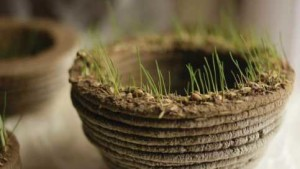 3D Printers Sprout Living Designs